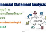 Chapter3, Return on Investment Capital, Video 13